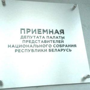 Подписи против налога на тунеядство передали депутату Петрашовой
