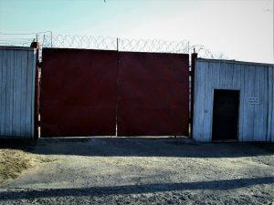 Amnesty International поддержали заключенных «детской колонии» в Бобруйске. Похоже, администрация ответила репрессиями
