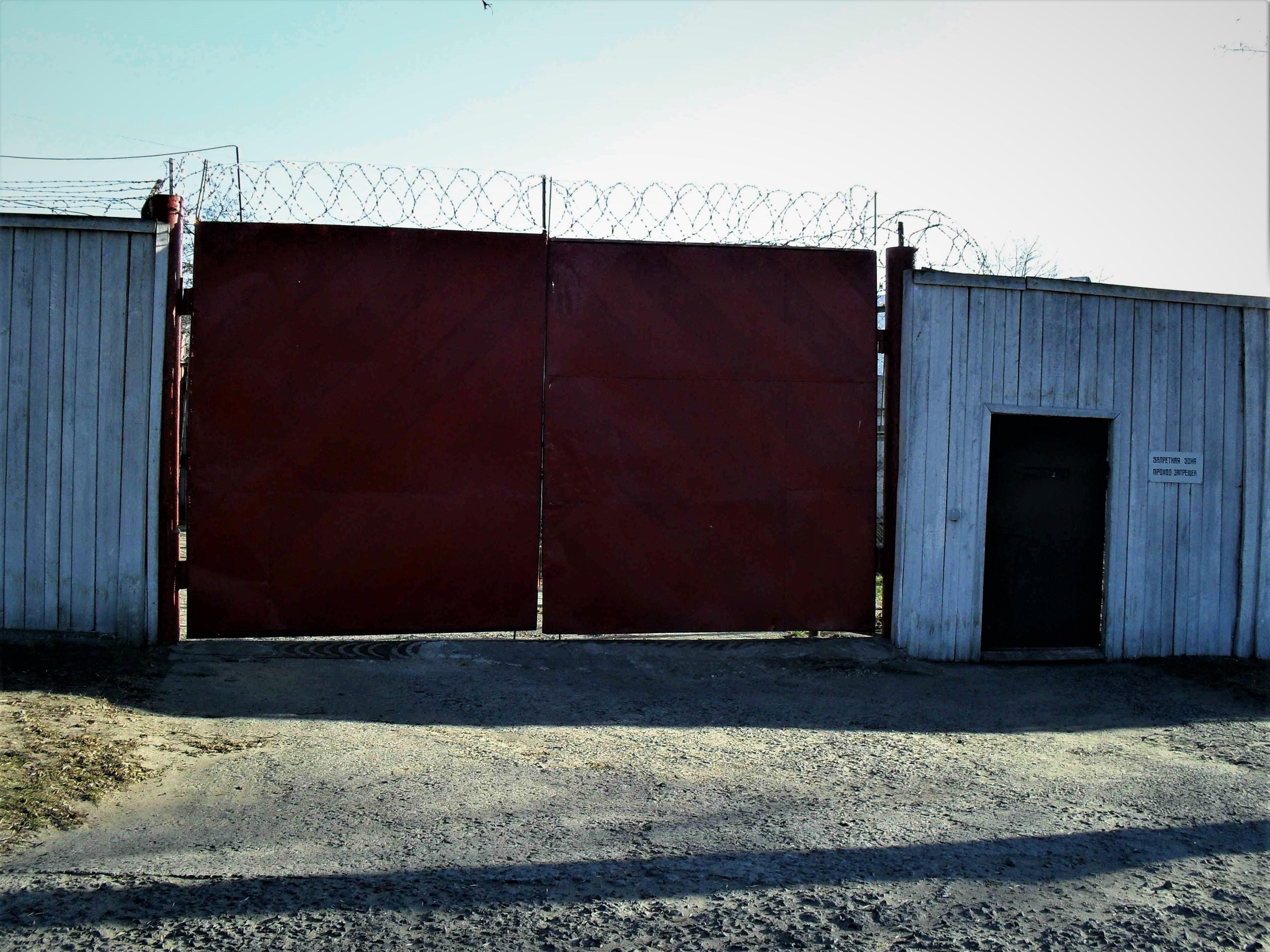 Amnesty International падтрымала зняволеных «дзіцячай калоніі» ў Бабруйску. Падаецца, адміністрацыя адказала рэпрэсіямі